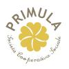 Logo Primula Cooperativa Sociale