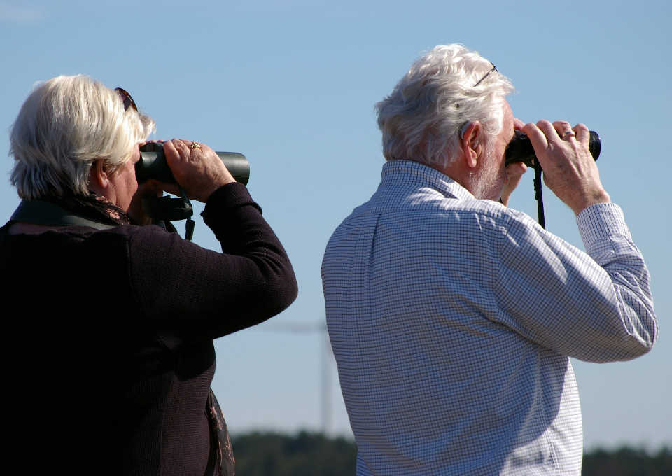 anziani-binocolo